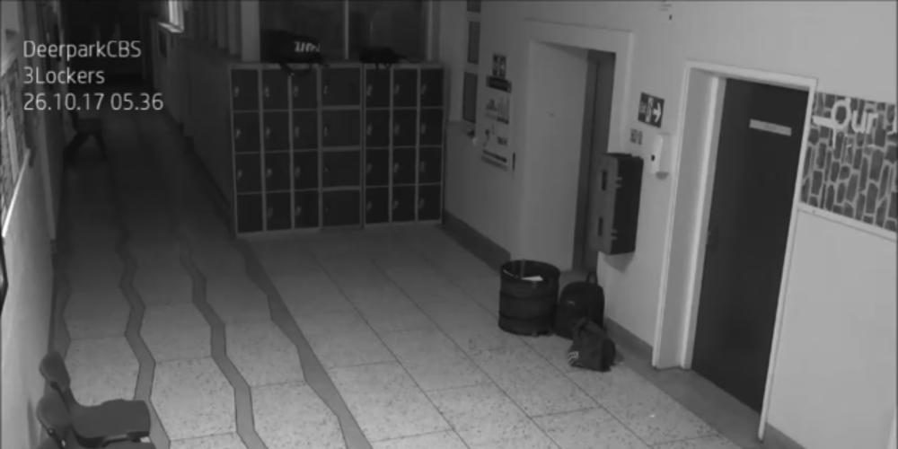 リアル学校の怪談動画