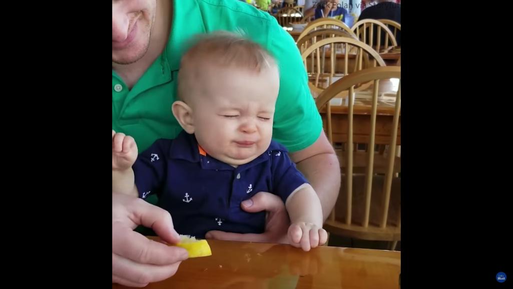 生まれて初めてレモン食べた赤ちゃんの爆笑リアクション