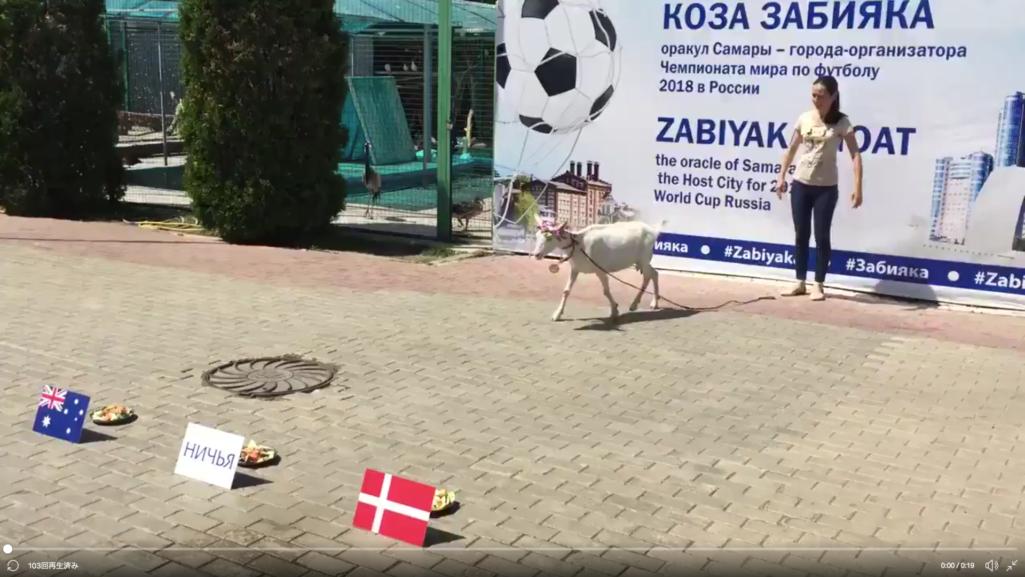 預言者ヤギがワールドカップ勝敗予想