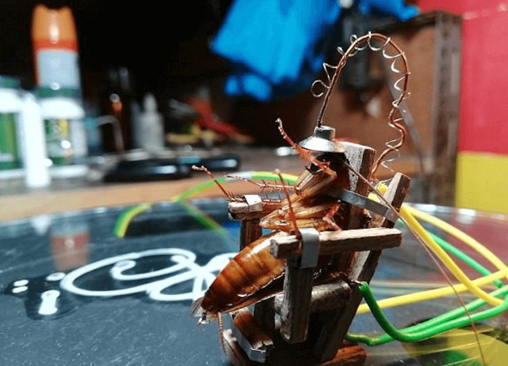 電気椅子でゴキブリの死刑執行