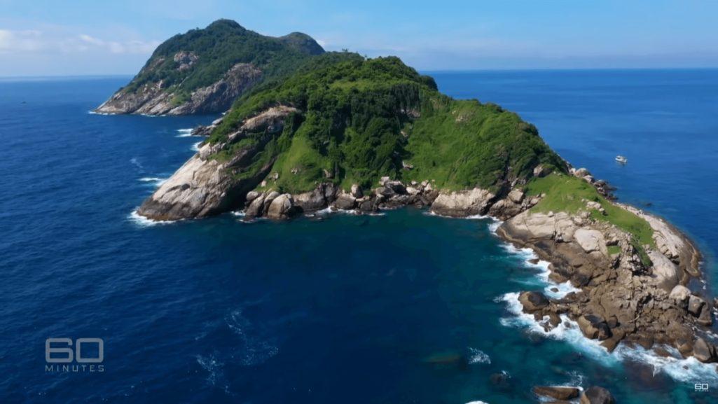 4000匹の毒蛇が生息する立入禁止の蛇島