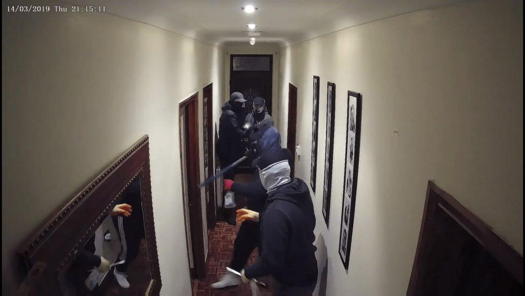 四人の武装強盗を一匹の犬が撃退