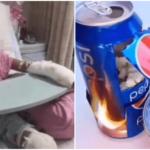 YouTubeの空き缶ポップコーンで少女が全身火傷