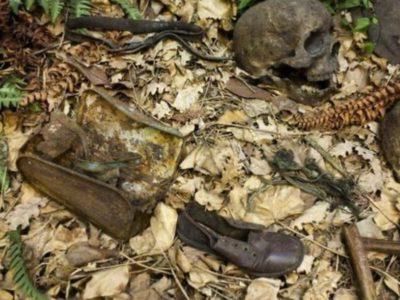 未解決-森の中の子供事件