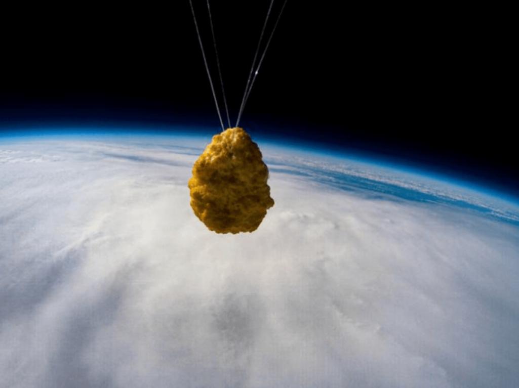 チキンナゲット宇宙へ行く