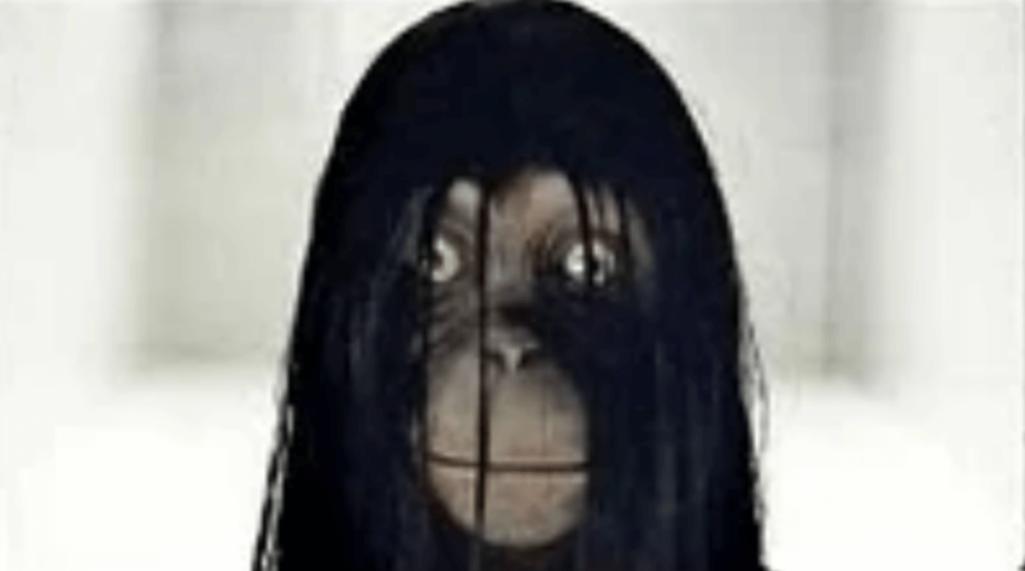 不気味動画と南米都市伝説「猿の魔女」