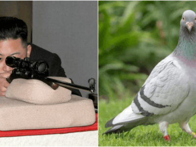 金正恩がコロナウイルスを運んでくる鳩に宣戦布告