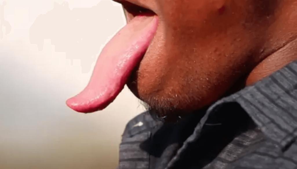世界一長い舌